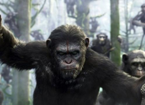 فيلم Dawn of the Planet of the Apes مترجم HD 2014